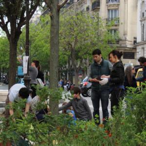 Aux Arbres Citoyens : Végétalisation Urbaine
